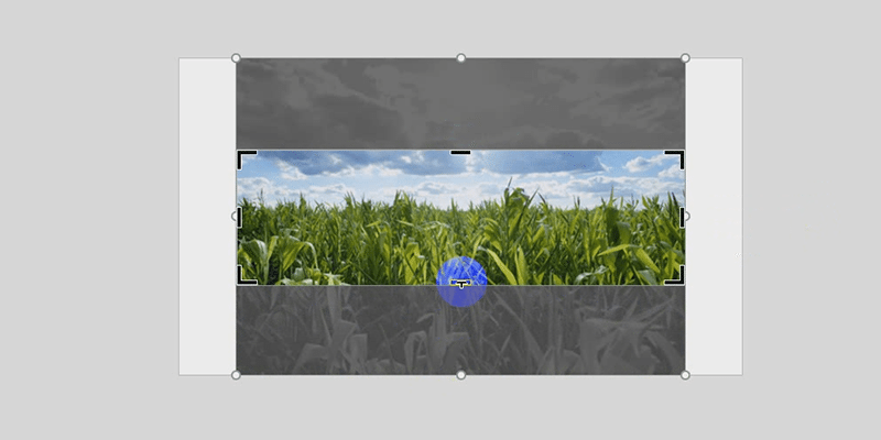 powerpoint crop image area